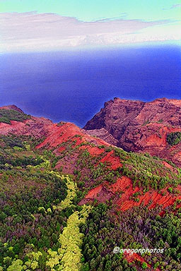 About 3,000 ft altitude in the Kokee Park area, just before dropping to the Na Pali Coastline