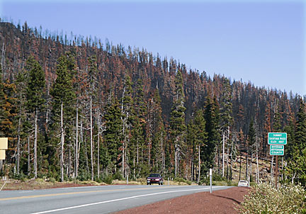 Just 4 weeks